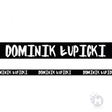 Dominik Łupicki